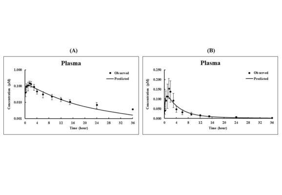 รูปที่ 4 แสดงถึงการทำนายความเข้มข้นของระดับสาร andrographolide ในเลือดมนุษย์หลังรับประทานสาร andrographolide 200 mg