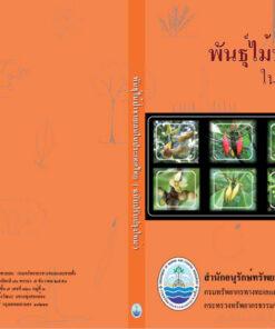 พันธุ์ไม้ป่าชายเลนในประเทศไทย