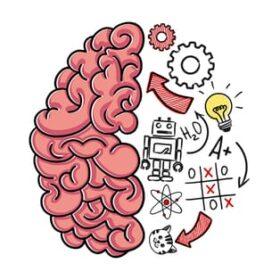 5 อันดับ สมุนไพรเพิ่มประสิทธิภาพสมองและเพิ่มความจำ
